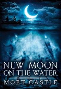 Castle_cover_NewMoon